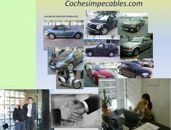 Franquicia Cochesimpecables.com